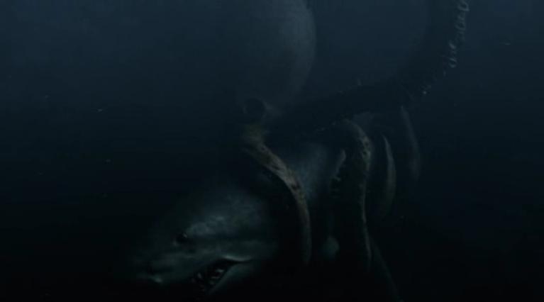 Mega Shark Vs Giant Octopus Plane Gif vs Megalodon   fighting